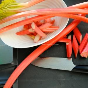 rhubarb icm..