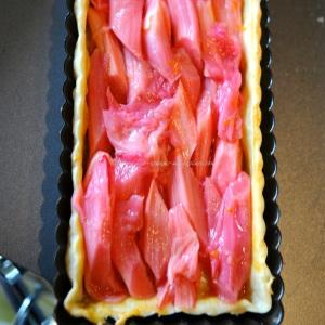 rhubarb icm15