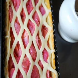 rhubarb icm16