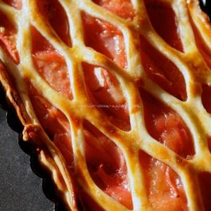 rhubarb icm18