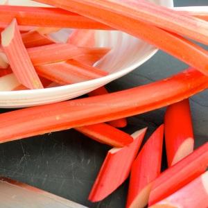 rhubarb icm2