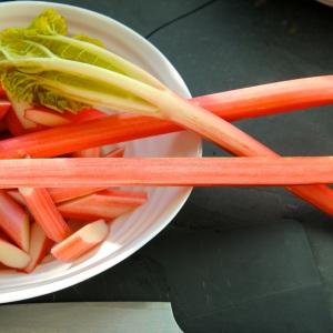rhubarb icm3