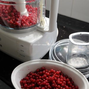 19 redcurrant © www.ice-cream-magazine.com.jpg