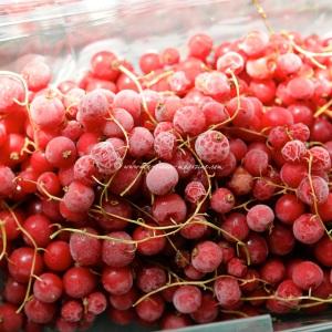 2 redcurrant © www.ice-cream-magazine.com.jpg