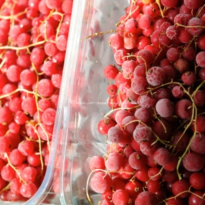 4 redcurrant © www.ice-cream-magazine.com.jpg