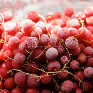 5 redcurrant © www.ice-cream-magazine.com.jpg