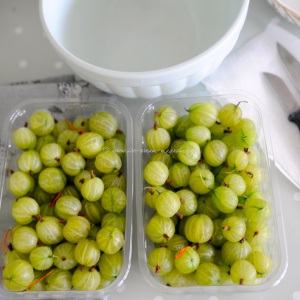 gooseberries (copy)