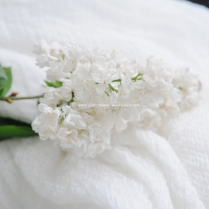 white lilac © www.ice-cream-magazine.com 6