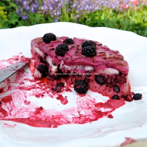 summer pudding ice cream cake  © www.ice-cream-magazine.com
