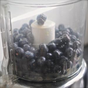 blueberry, lime & vodka sorbet