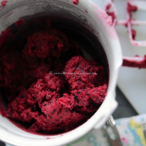 blueberry, lime  vodka sorbet © www.ice-cream-magazine.com