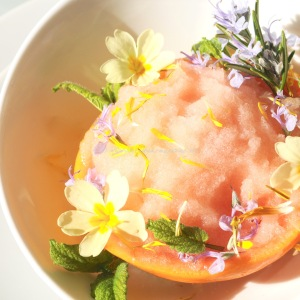 Gin and Grapefruit sorbet. Givre and take © www.ice-cream-magazine.com