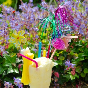 pina colada ice cream © www.ice-cream-magazine.com