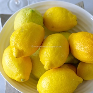 Sgroppino al Limone © www.ice-cream-magazine.com