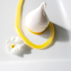 lemon meringue parrot © www.ice-cream-magazine.com